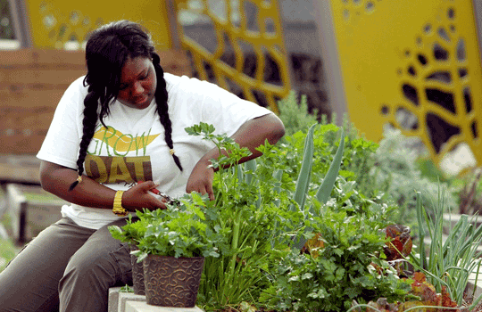 Growth Dat Youth Farm | IntheNOLA.com