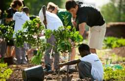 Grow Dat Youth Farm 'growing food, nurturing leaders'